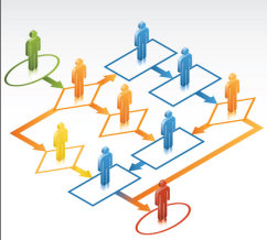 IFD integrated organisation networks