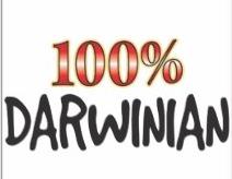 Facing a Darwinian World
