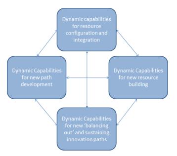 Distinct Capabilities for Innovation