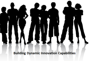 building dynamic innovation capabilities 2